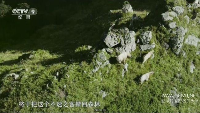 央视纪录片《航拍中国 第一季》全6集 国语中字 1080P/TS/10.5G 全景式俯瞰美丽新中国插图(1)