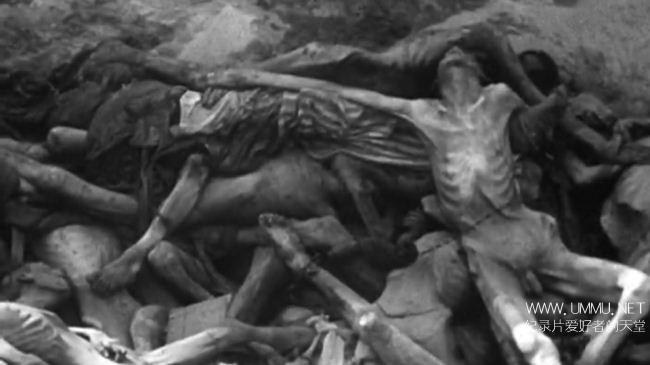 美国纪录片《夜与雾 Nuit et brouillard/Night and Fog 1955》英语中字 1080P/MKV/3.27G 纳粹集中营暴行的纪录片插图(4)