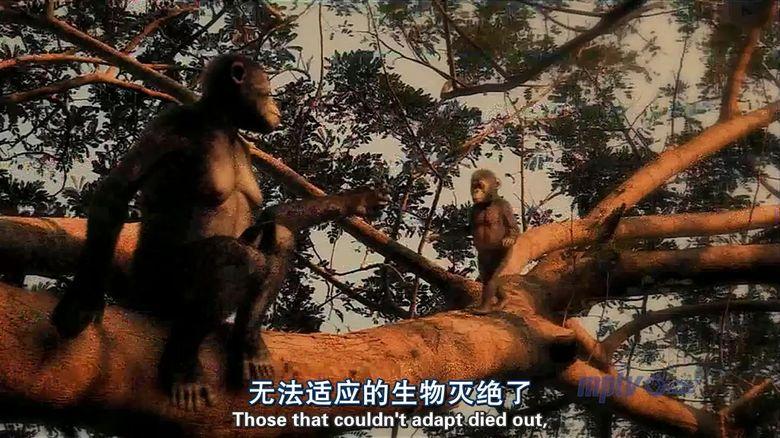 PBS纪录片《人类进化 Becoming Human》全3集 英语中英双字 高清/MP4/1.11G 人类探索纪录片下载插图(7)