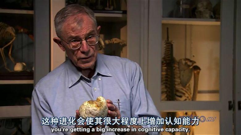 PBS纪录片《人类进化 Becoming Human》全3集 英语中英双字 高清/MP4/1.11G 人类探索纪录片下载插图(4)