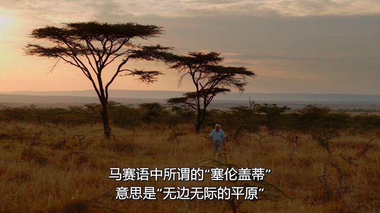 Netflix纪录片《大卫·爱登堡:地球上的一段生命旅程 David Attenborough: A Life on Our Planet 2020》英语中字 1080P/MKV/3.56G 自然界破坏性变化插图(5)