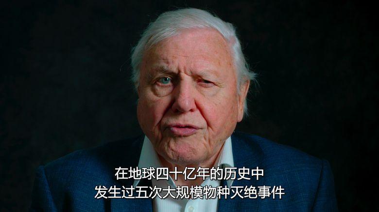 Netflix纪录片《大卫·爱登堡:地球上的一段生命旅程 David Attenborough: A Life on Our Planet 2020》英语中字 1080P/MKV/3.56G 自然界破坏性变化插图(1)