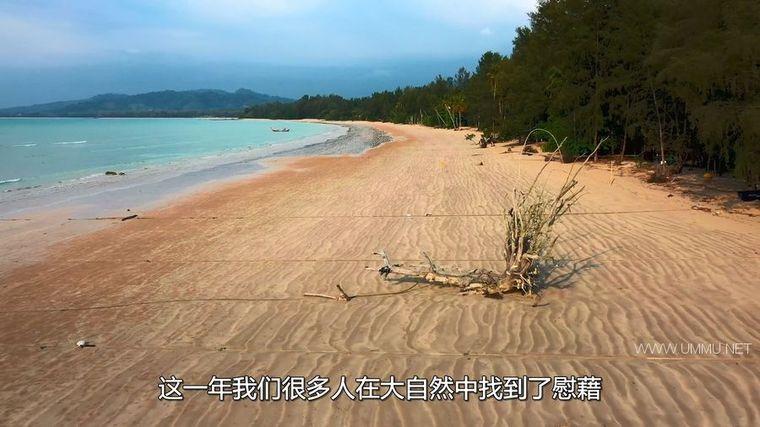AppleTV纪录片《地球改变之年 The Year Earth Changed 2021》英语中字 1080P/MKV/3.56G 人类和野生动物和谐共处插图(7)