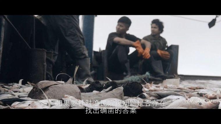 Netflix纪录片《海洋阴谋 Seaspiracy 2021》官方原版英语中字 1080P/MP4/3.78G 人类对海洋物种的危害插图(5)