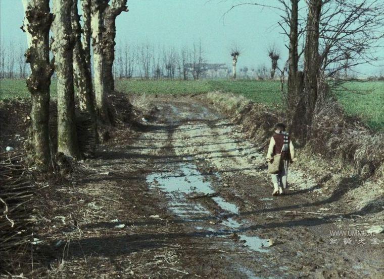 意大利纪录片《木屐树 The Tree of Wooden Clogs 1978》意语中字 高清/MKV/1.16G 十九世纪末意大利农家生活插图(2)